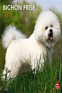 Bichon Frise 2012 Square 12X12 Wall Calendar (Multilingual Edition) ebook