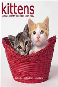 Kittens 2007 Wall Calendar ebook